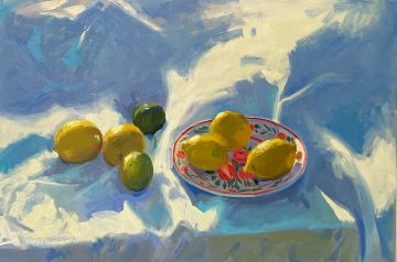 Lemons and limes on white in the evening sunlight